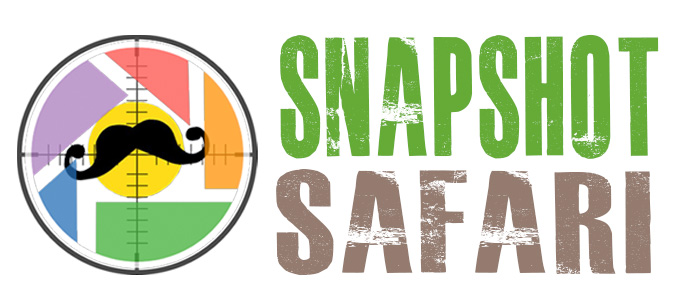 Sanpshot Safari logo